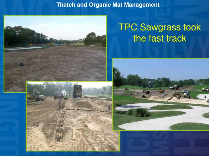 Thatch and Organic Mat Management
