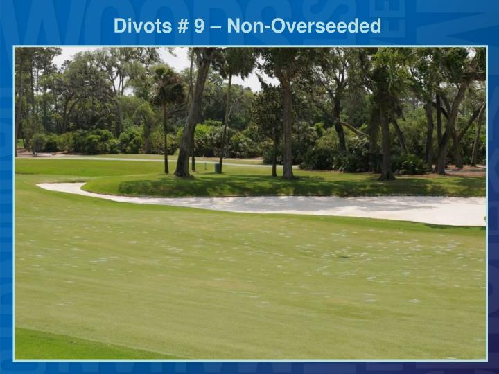 Divots # 9 – Non-Overseeded