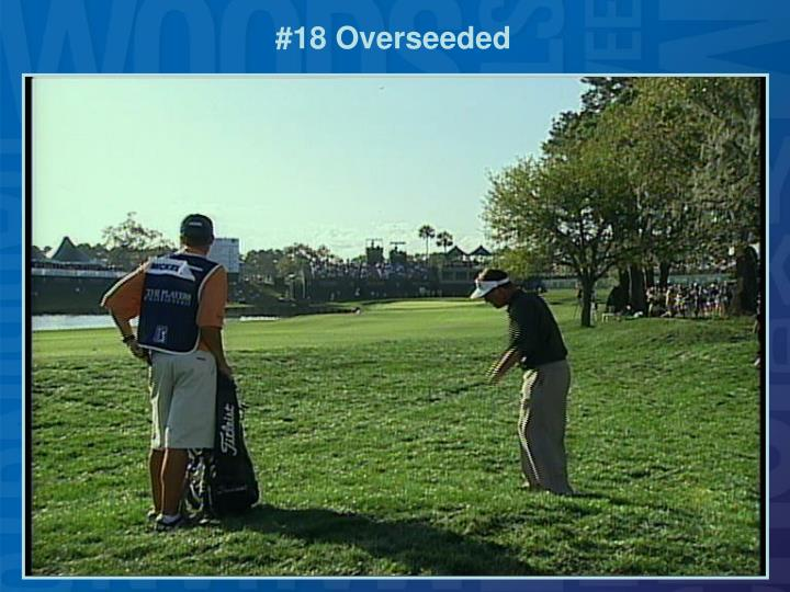 #18 Overseeded