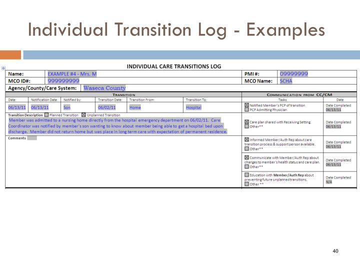 Individual Transition Log - Examples