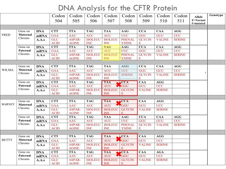 DNA Analysis for the CFTR Protein