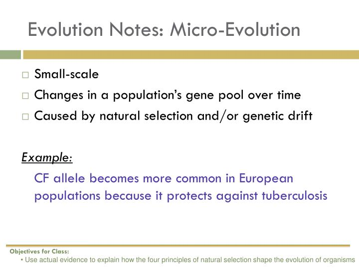 Evolution Notes: Micro-Evolution