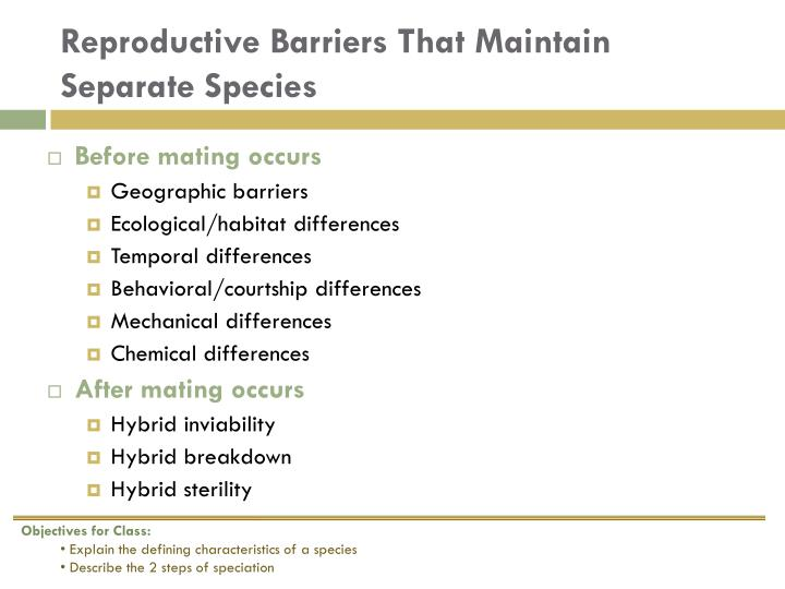 Reproductive Barriers That Maintain Separate Species