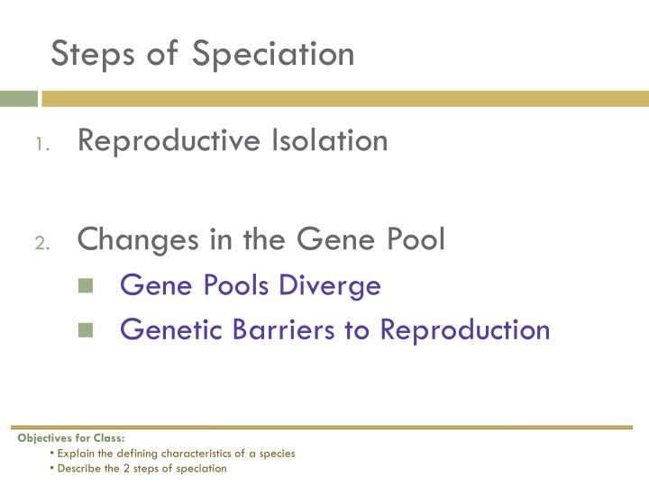 Steps of Speciation