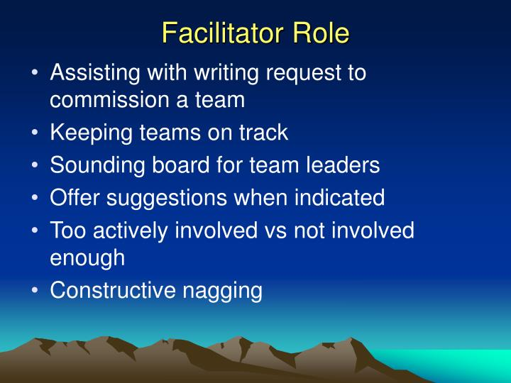 Facilitator Role