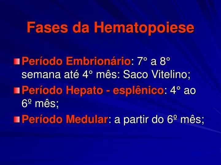 Fases da Hematopoiese