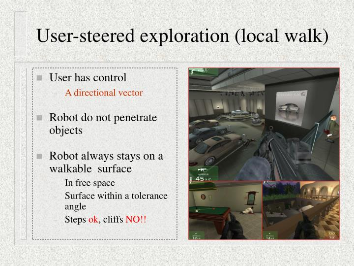 User-steered exploration (local walk)