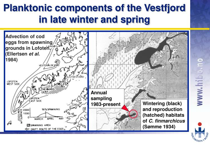 Planktonic components of the vestfjord in late winter and spring