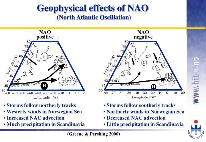 Geophysical effects of NAO