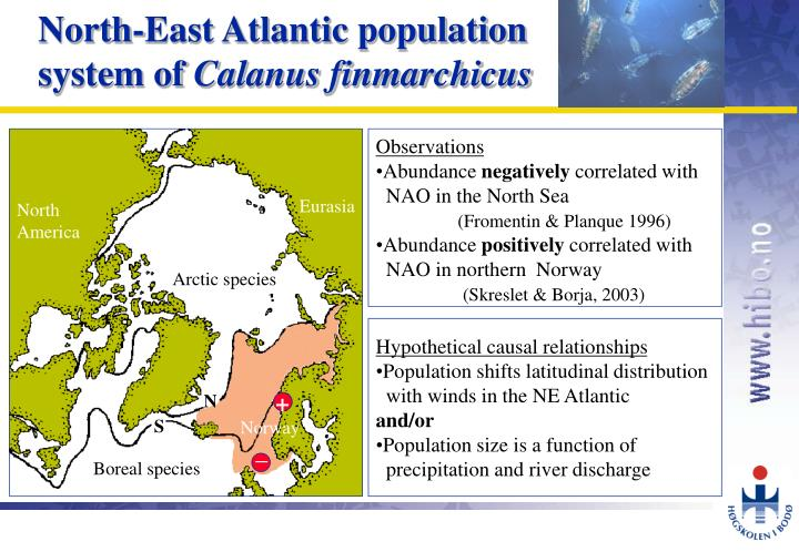 North-East Atlantic population system of