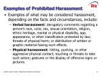 examples of prohibited harassment