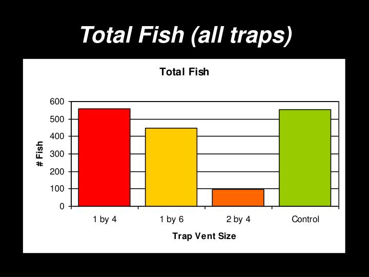 Total Fish (all traps)