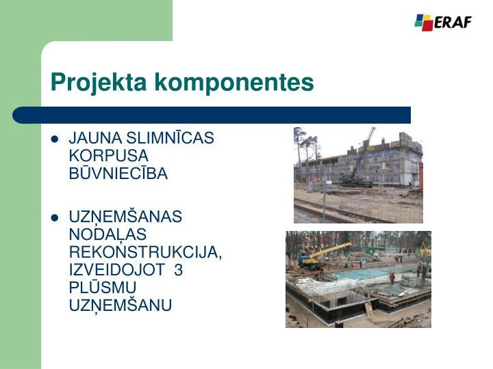 Projekta komponentes