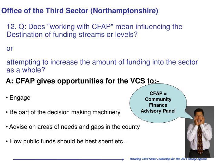 CFAP = Community Finance Advisory Panel
