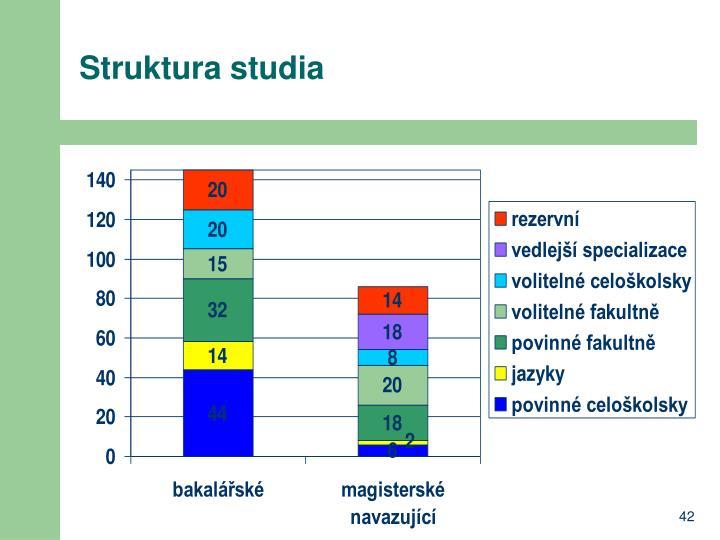 Struktura studia