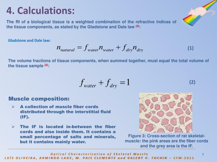 4. Calculations: