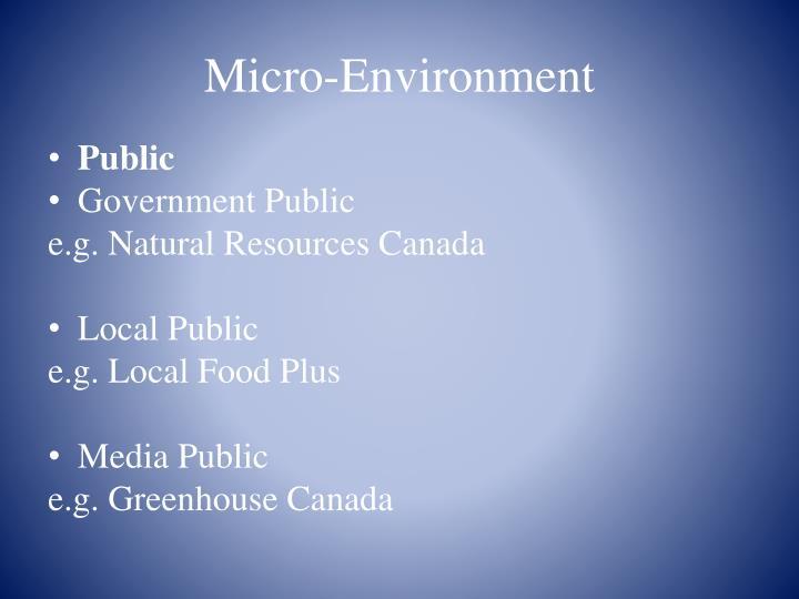 Micro-Environment