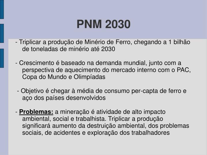 PNM 2030