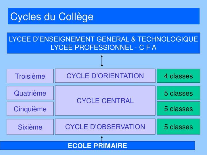 Cycles du Collège