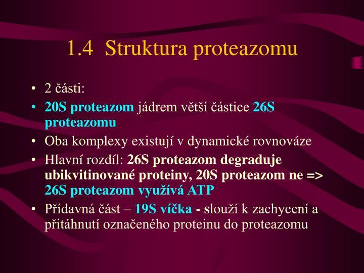 1.4  Struktura proteazomu