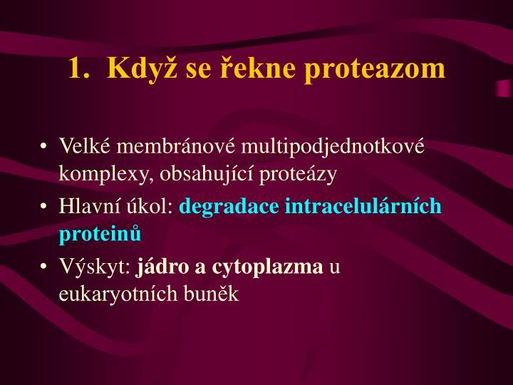 1.  Když se řekne proteazom