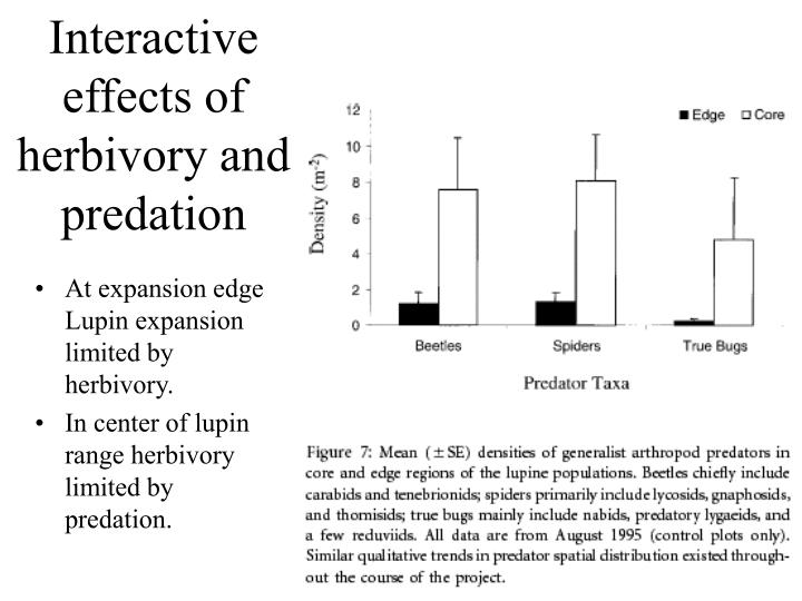 Interactive effects of herbivory and predation