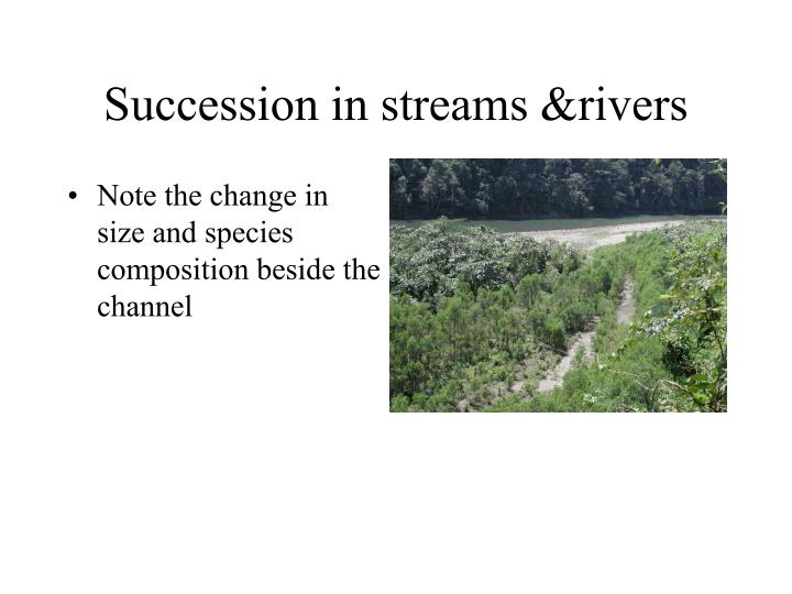 Succession in streams &rivers