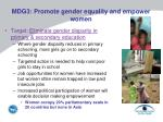 mdg3 promote gender equality and empower women