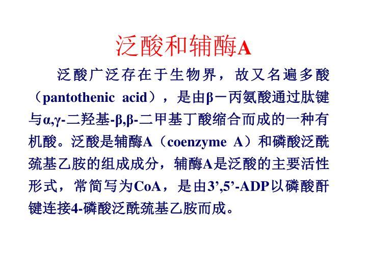 泛酸和辅酶