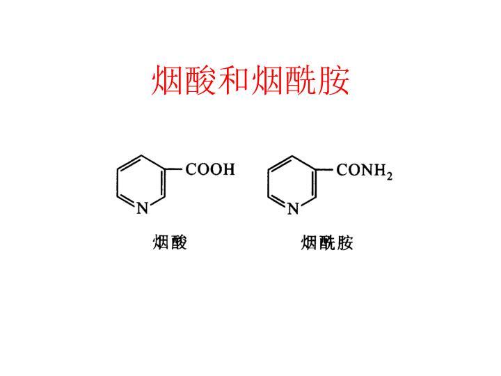 烟酸和烟酰胺