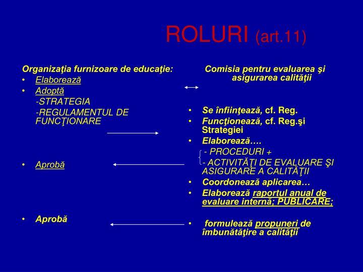 Organizaţia furnizoare de educaţie: