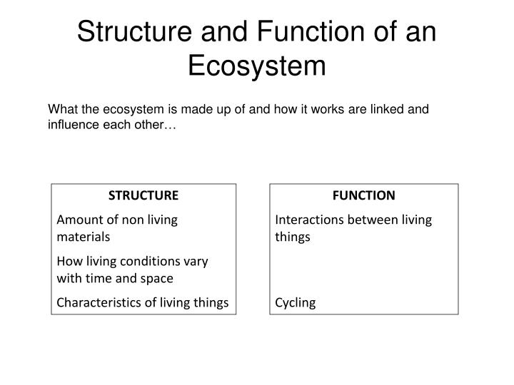 an introduction to the identify the composition of thirteen objects 1 introduction to objects 11  a programmer who is faced with some problem must identify a computing task that needs to be performed in order to solve the problem program-  1this discussion is based on chapter 2 of an introduction to object-oriented programming by tim-othy budd 11.