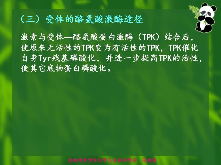 (三)受体的酪氨酸激酶途径