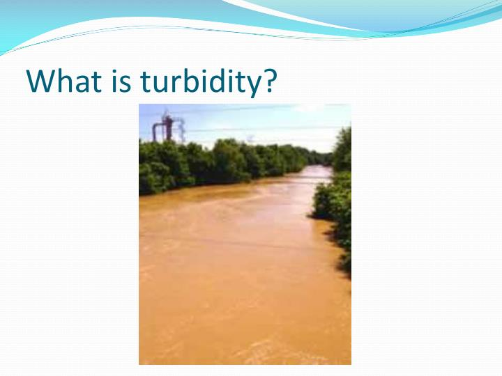 What is turbidity1