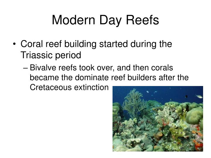 Modern Day Reefs