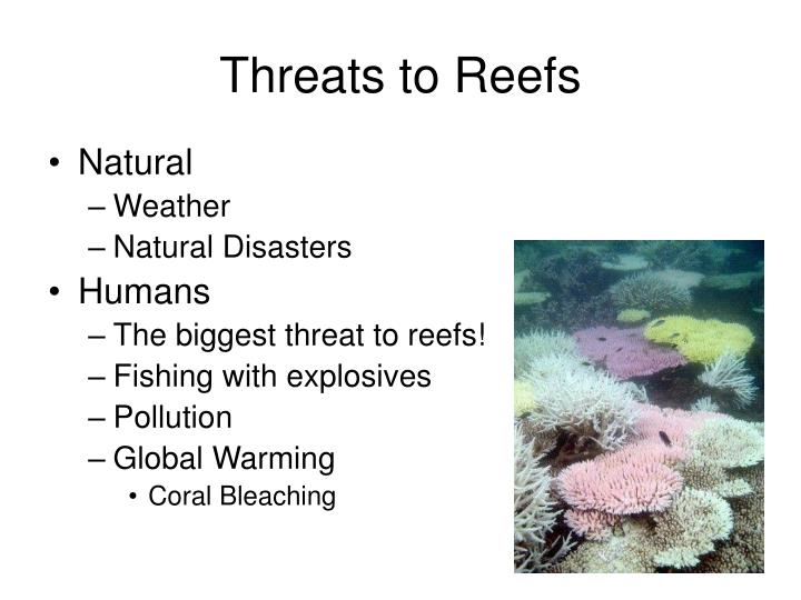 Threats to Reefs