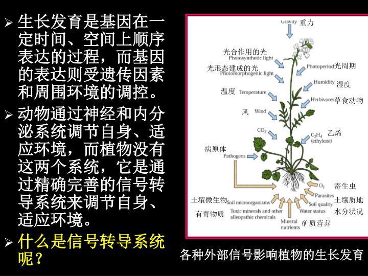 生长发育是基因在一定时间、空间上顺序表达的过程,而基因的表达则受遗传因素和周围环境的调控。