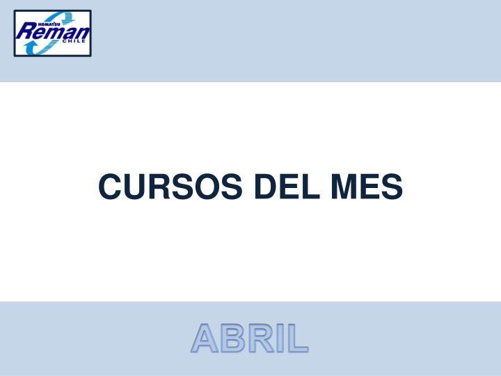CURSOS DEL MES
