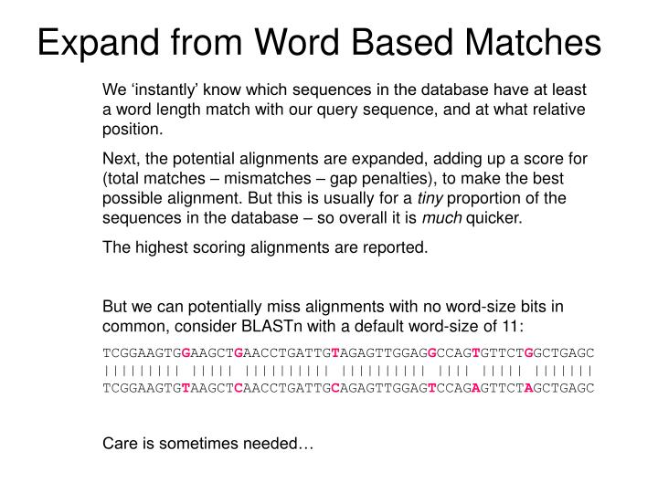 Expand from Word Based Matches