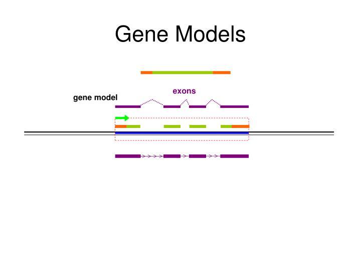 Gene Models