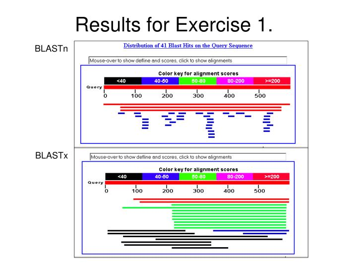 Results for Exercise 1.