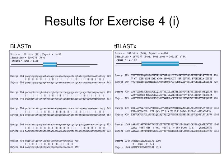Results for Exercise 4 (i)