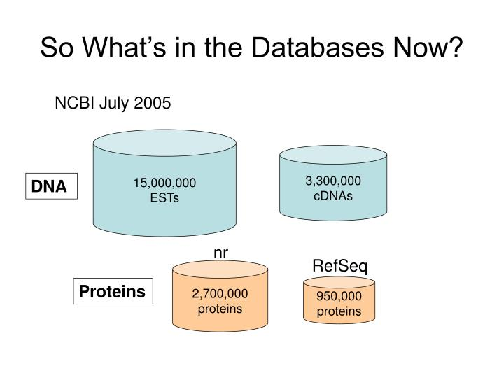 So What's in the Databases Now?