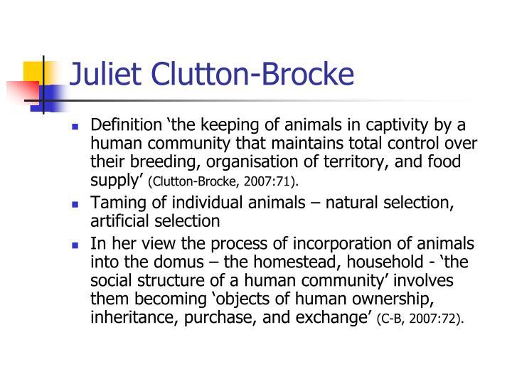 Juliet Clutton-Brocke