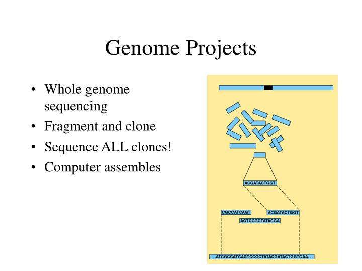 Genome Projects