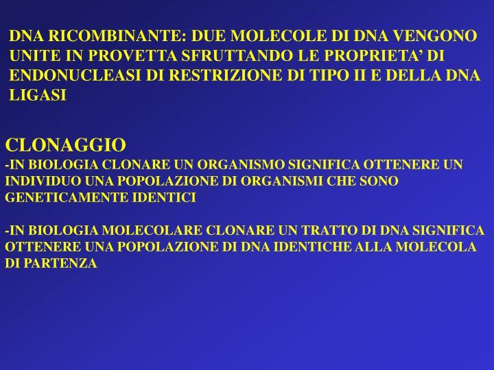 DNA RICOMBINANTE: DUE MOLECOLE DI DNA VENGONO