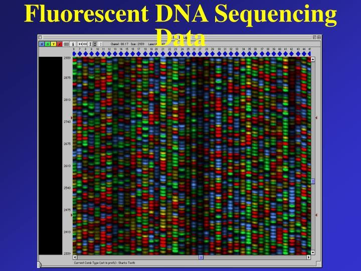 Fluorescent DNA Sequencing Data