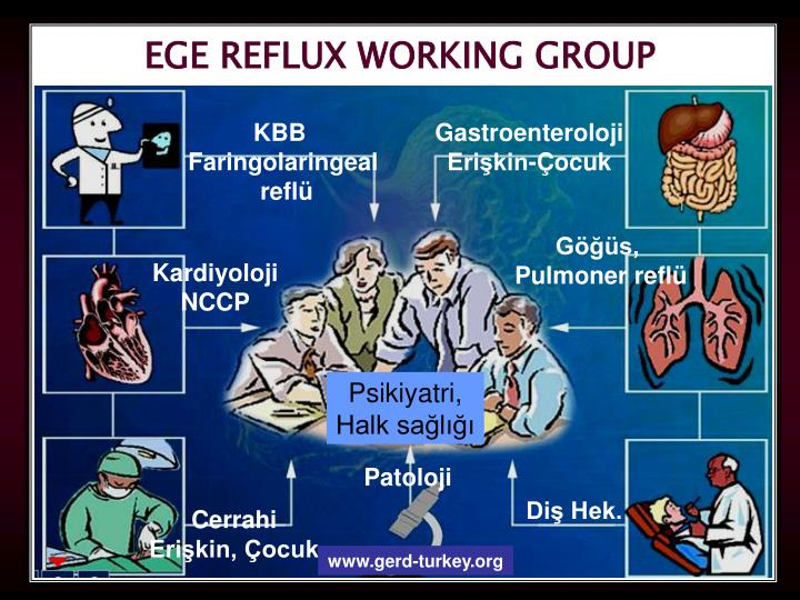 EGE REFLUX WORKING GROUP