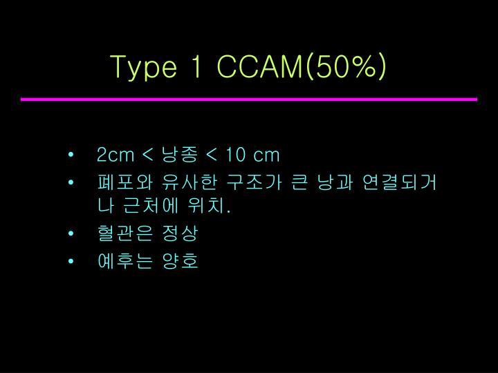 Type 1 CCAM(50%)