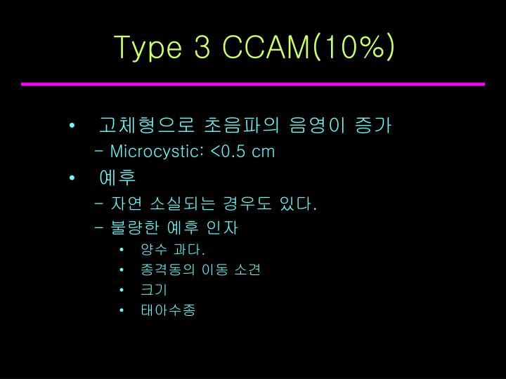 Type 3 CCAM(10%)